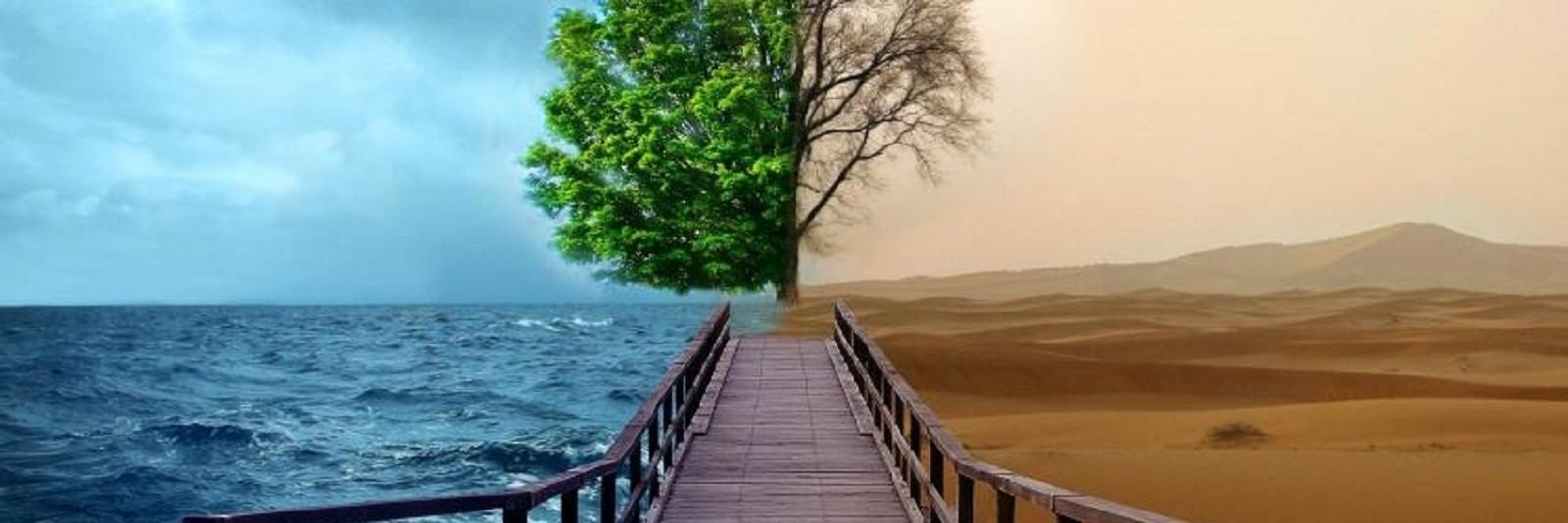 Pustinjak i more